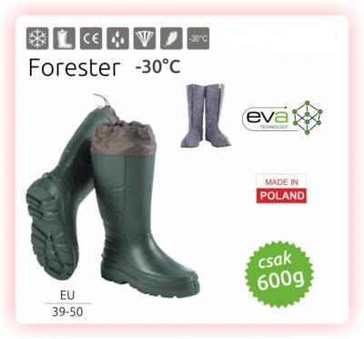 Forester (CAMMINARE) 1.